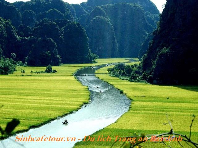 Hoa lư Tam Cốc