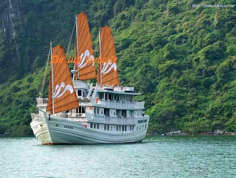 Tour Du thuyền 5 sao Paradise Lucxury Hạ long 2 ngày 1 đêm